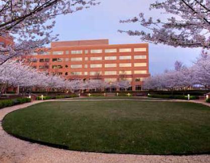 Milestone Campus